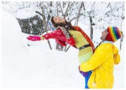 shimla-honeymoon-package